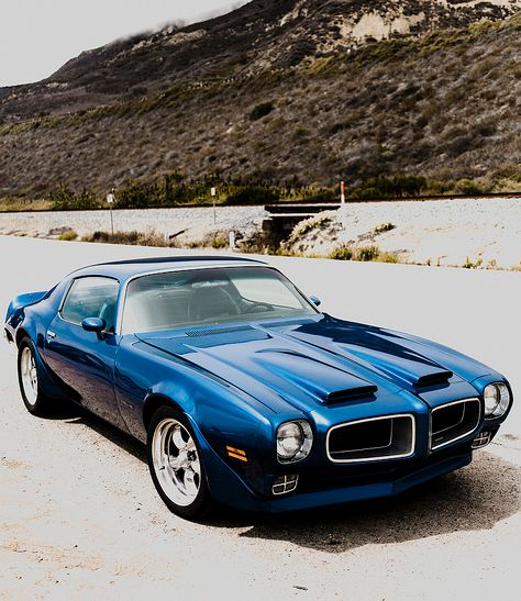 Best Firebird Trans Am Images On Pinterest Firebird Trans Am