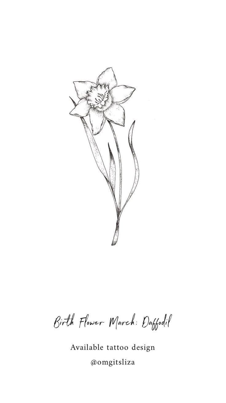 Daffodil Tattoo Outline Kata Kata Bijak In 2020 Birth Flower Tattoos Daffodil Tattoo Birth Flowers