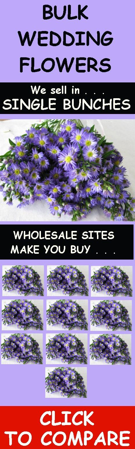 Wholesale Wedding Flowers - How to Avoid the Hype of Buying Flowers Online.  Many flower sites require minimum purchases of 5 - 10 bunches!  What if you don't need that much?  Click on the link to learn how to shop wisely for your #wholesale #wedding #flowers