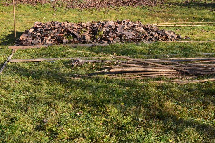 Kartoffeln im Mulchbeet - wieder  eine wenig arbeitsaufwändige Möglichkeit aus der Permakultur ein Beet anzulegen