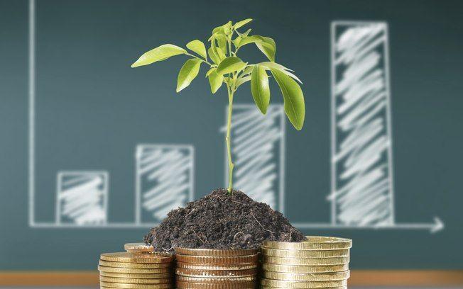 Para obter a melhor rentabilidade, investidor precisa ter em mente que Tesouro Direto é um investimento de médio e longo prazos