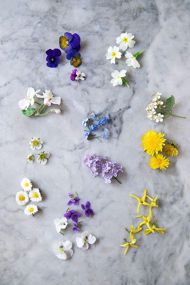 Jadalne Kwiaty Do Dekoracji Ciast I Deserow Kwitnace Wiosna Mozna Je Sadzic W Przydomowym Ogrodku Lub Edible Flowers Edible Flowers Cake Cake Decorating Tips