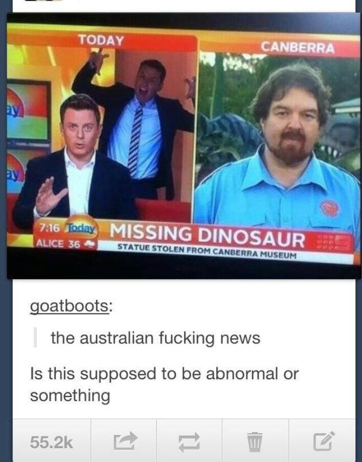 Australia seems like it would be a fun place.. If not for the deadly animals and horrible weather
