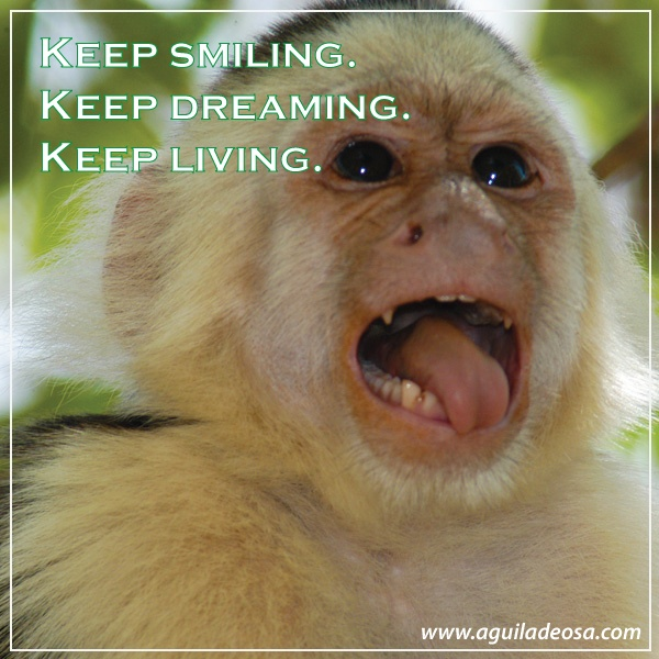 Keep smiling #quote #phrasesForLife