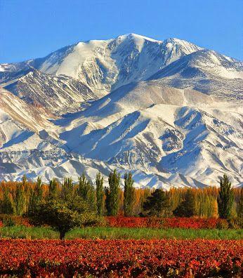 Google+ Postales de Cuyo: #Mendoza  Respirá aire puro cordillerano mientras contemplás el increíble despliegue de colores: verdes y naranjas en viñedos al borde de pálidas montañas, con un telón de fondo azul intenso.