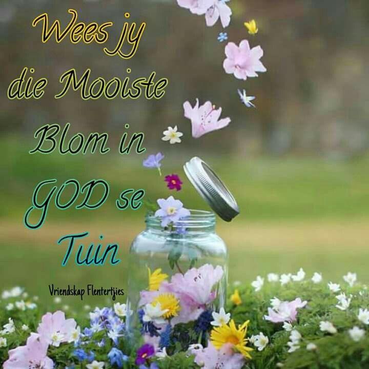 Wees jy die mooiste blom in God se tuin