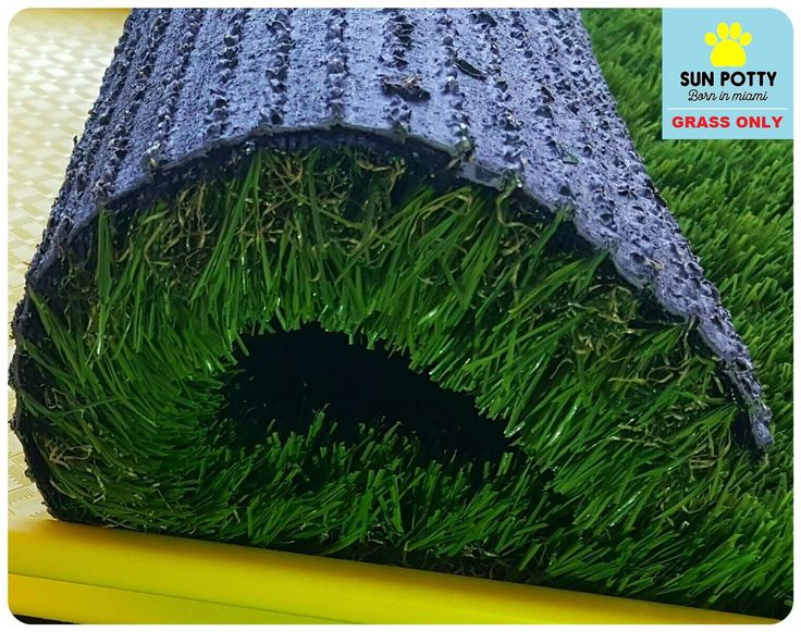 GRASS ONLY (TRAY NOT INCLUDED) CLICK HERE TO PURCHASE