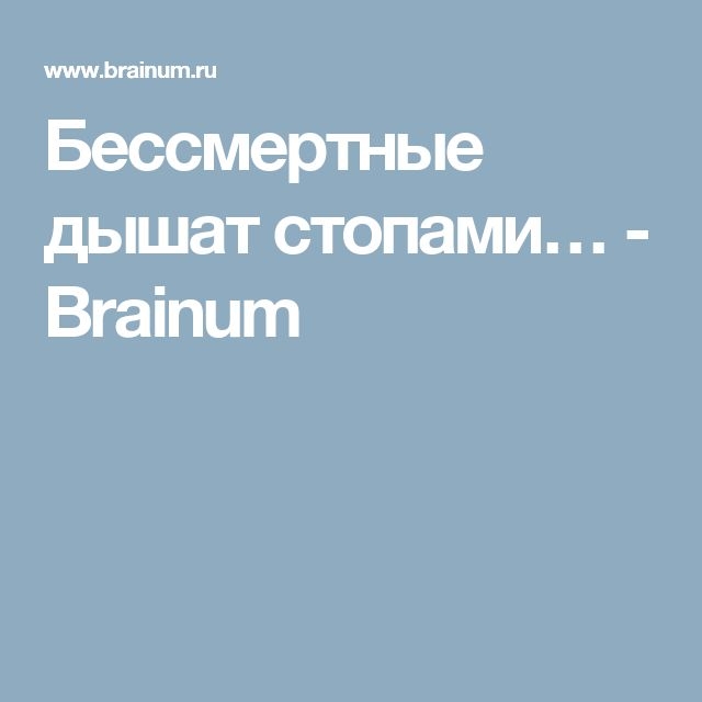Бессмертные дышат стопами… - Brainum