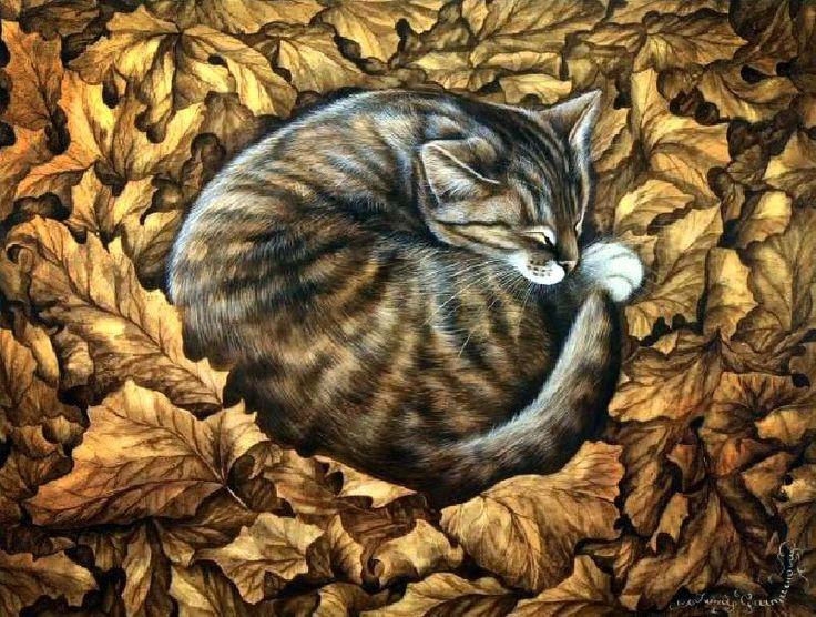 картинки спящий кот декупаж были основные два