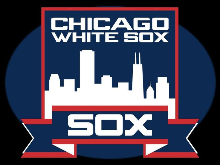 chicago white sox with skyline