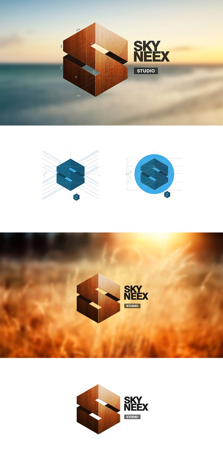 Logo / Skyneex. 3D