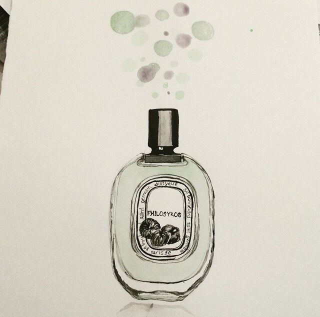 Diptyque philosykos parfum watercolors illustration