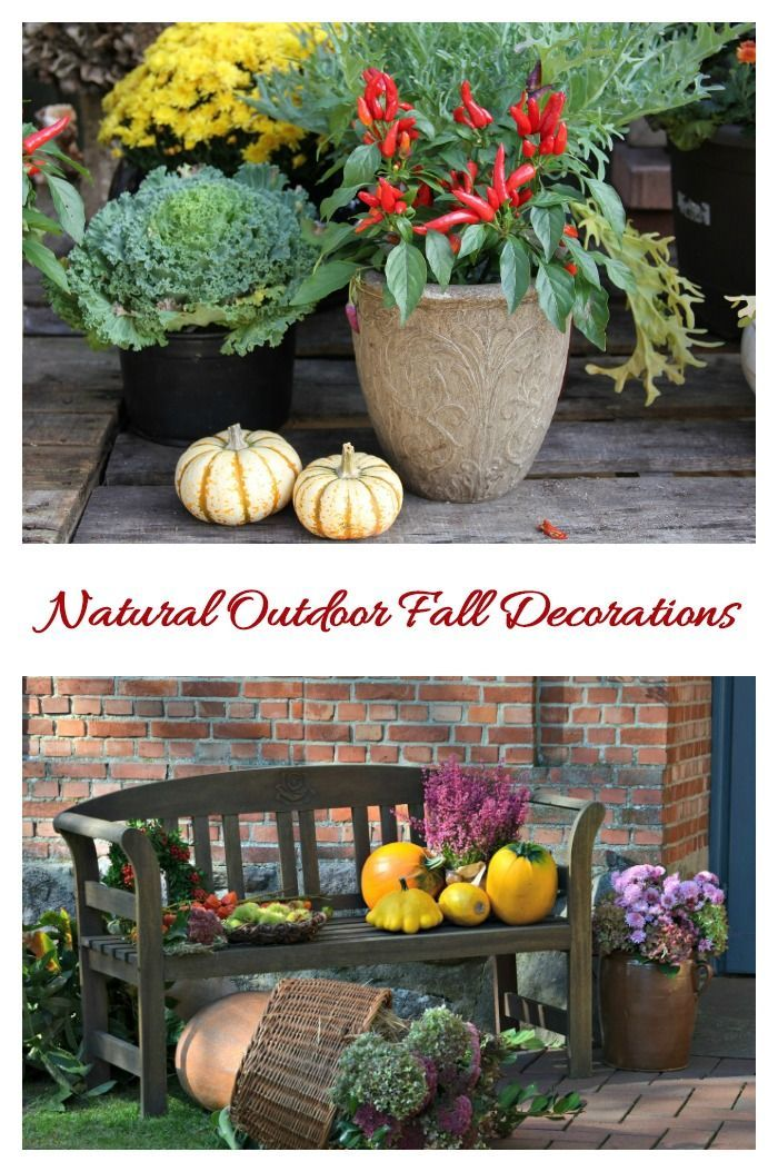 Tips for Fall Decorations - Natural and Easy Autumn Decor Ideas - natural halloween decorations