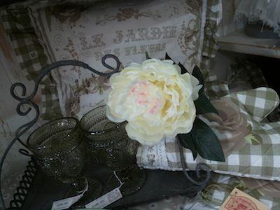 le jardin de roses