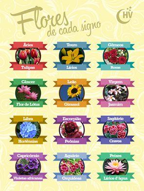 Flores de cada signo. #horóscopovirtual #signos #flores #zodíaco