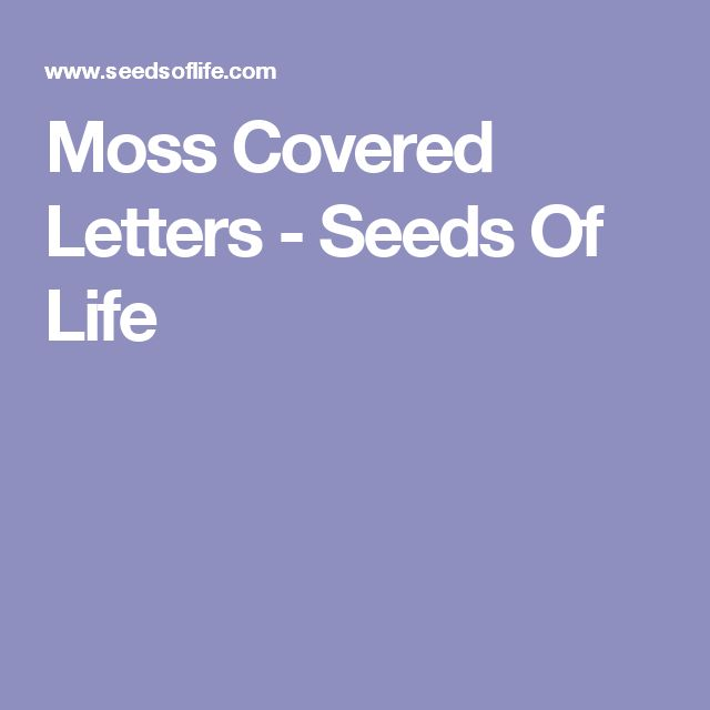 Moss Covered Letters - Seeds Of Life