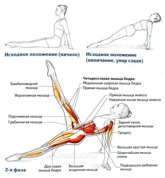 Подъем ног из упора сзади      Исходное положение. Сядьте на мат, выпрямите ноги, сведите их вместе и оттяните носки, как показано на рисунке. Прямые руки опираются на мат позади ягодиц, пальцы обращены в стороны. Поднимите таз и выпрямите тело так, чтобы при виде сбоку оно представляло собой прямую линию от лодыжек до плеч. Такое положение называется упором сзади.     Вдох. Поднимите одну ногу вверх.     Выдох. Опустите ногу на мат.     Вдох. Поднимите другую ногу.     Выдох. Опустите ногу…