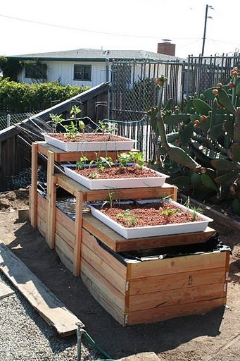 Backyard aquaponics ideas