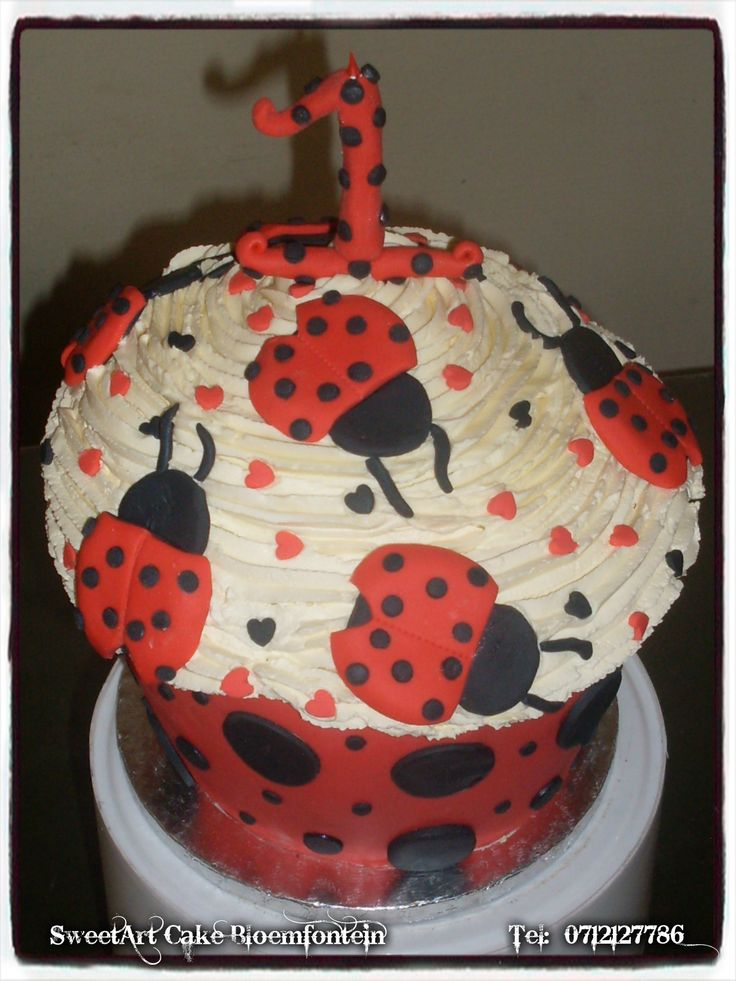 Giant cupcake lady birds. For more info & orders email SweetArtBfn@gmail.com or call 0712127786.