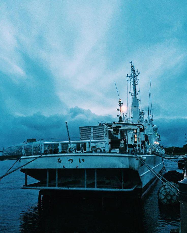. 備えて待つ - Stand ready . 昨日は結構雨だったのでは厳しいと思っていましたが夕方上がりました . あきらめずに準備して待つことも必要 . 海保の船舶は常に有事に備えていることでしょう . #いわきららミュウ #小名浜 #いわき #福島 #東北で良かった  #夕日 #夕焼け #小名浜 #夜景 #海上保安庁 #なつい  #onahama #iwakicity #fukushima #japan #リフレクション #アクアマリンふくしま  #twilight #onahama #port #marines #pacific #sunsets #japan_of_insta #reflection #nightview #aquamarinfukushima #japancoastguard #natsui