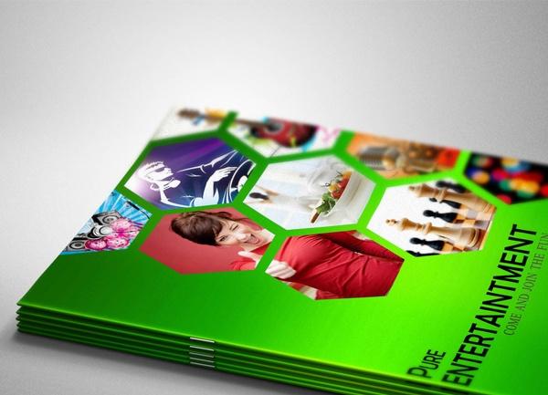 50 best Brochure Designs images on Pinterest Flyer design - free pamphlet design
