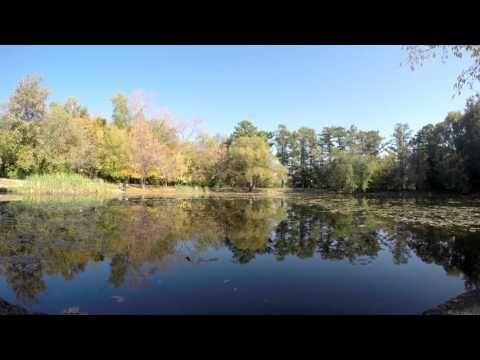 Timelapse Сокольники Олений пруд и майский пруд