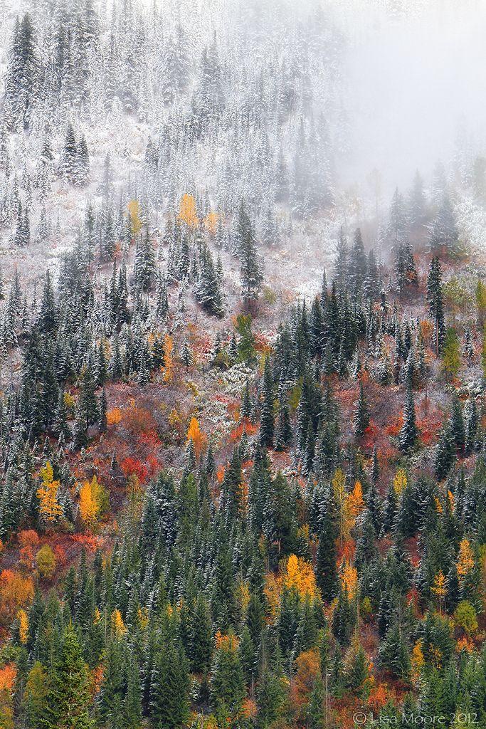 Beautiful Nature (buenavistas: Landscapes and Vistas)