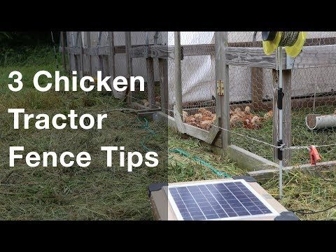Access a lot of FREE resources on my Broiler Resources Page at: https://farmmarketingsolutions.com/resources/broilers I buy all my fencing supplies from: … source