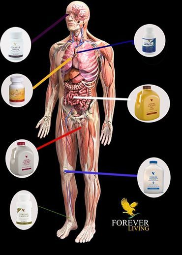 Forever Living Health and Wellness products