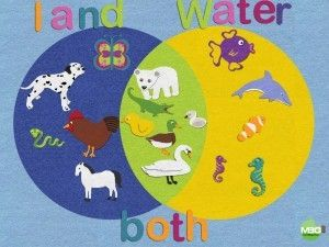 Easy and fun way to practice creating Venn Diagrams with young kids using an iPad app (Felt Board) Kindergarten, First Grade