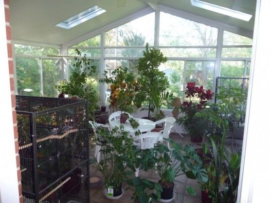 17 Best Images About Sunrooms Conservatories Atriums On