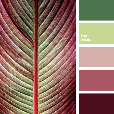 1000 ideas about bright color palettes on pinterest - Combination of green and pink ...