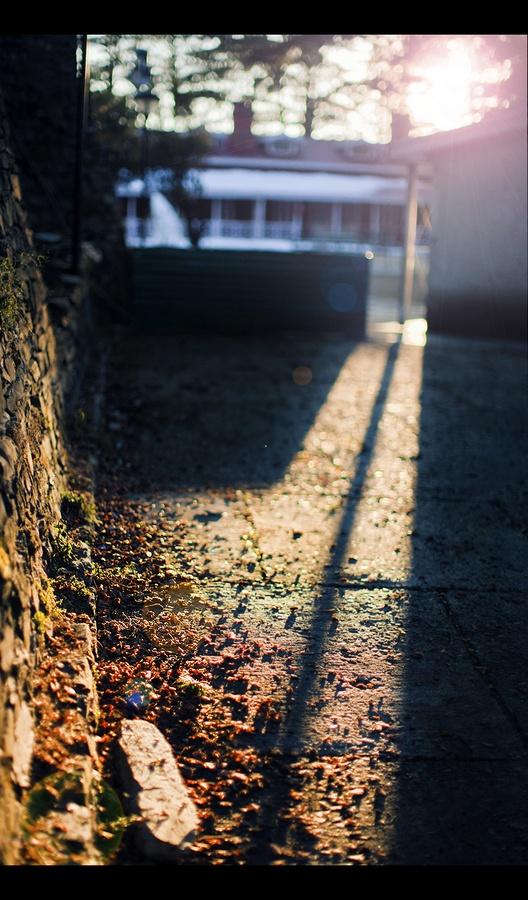 Light & Shadow...