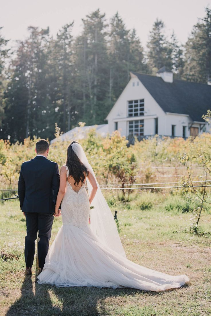 Wedding Photos at Sea Cider Victoria BC Photographer | Venues in Victoria BC for Weddings and Events | Bride and Groom Portrait Ideas