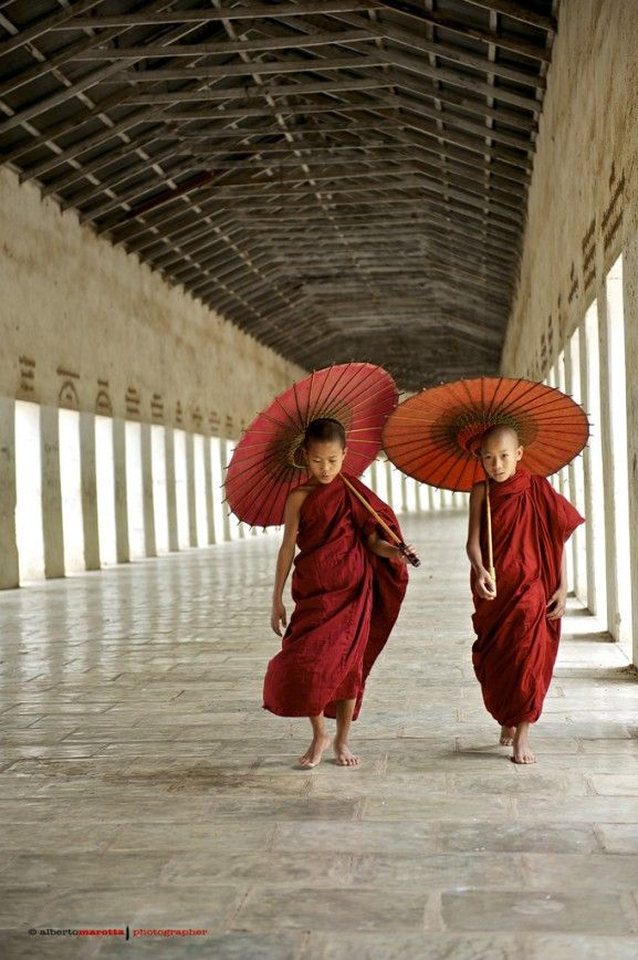 Young Monks in Myanmar | Photo by  alberto.marotta with Pin-It-Button on http://www.nikonclub.it/gallery/index.php?module=listGallery&method=detail&id=711091