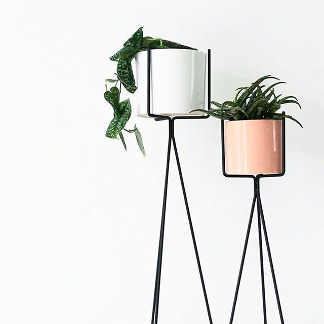 An organized workspace means an organized mind.  That is why we totally adore minimalistic room decor. Do you? #treasure  .  #design #decor #minimalistic #plants #interiordesign #details #f4f #thinkpink #followher #bestoftheday #followme #picoftheday #flowers #botanicalpickmeup #natureonpage    #Regram via @hotjewellery