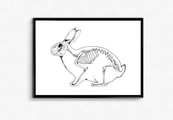 Art Print (anatomia) - disegno a penna Bunny Bunny Poster - coniglio scheletro stampa - di coniglio / anatomia arte della parete, Poster di scienza, regalo veterinario