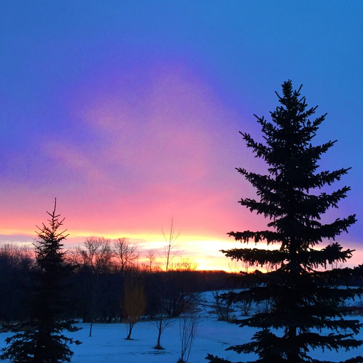 Saskatchewan sunrises are not so bad either.   May your day be bright and filled with kindness. If it isn't stick your tongue out when no one is looking and fill your day with your own kindness.    Some days are like that. :)