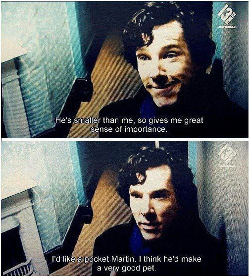 Benedict Cumberbatch on Martin Freeman OMG THE FEELS!! A little pocket hedgehog Martin!! << I want one, too. :)