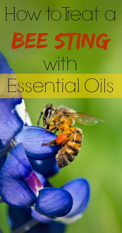Fast & natural bee sting relief with essential oils! Definitely need to keep these on hand for the summer!
