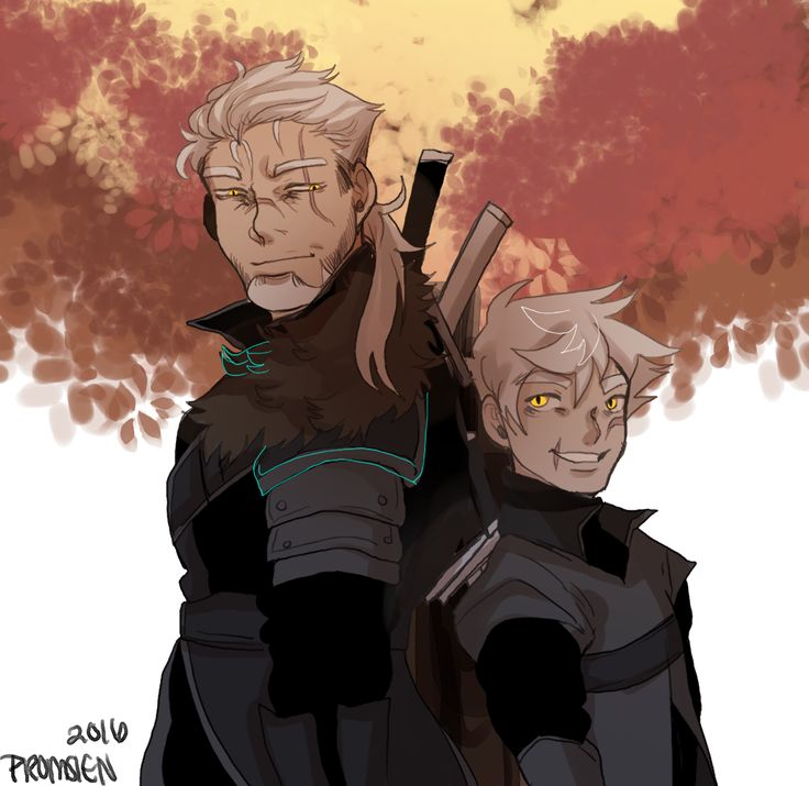 witcher vlad and witcher danny phantom