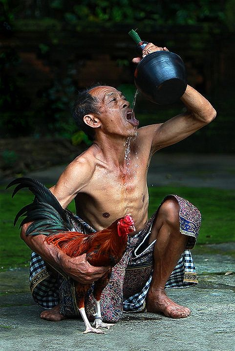 Bali Bbe6ab437d9a33d5ebcad5e0aa268c67
