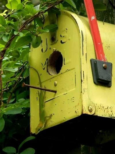 Mailbox adorns the top of the arbor on fleamarketgardening: