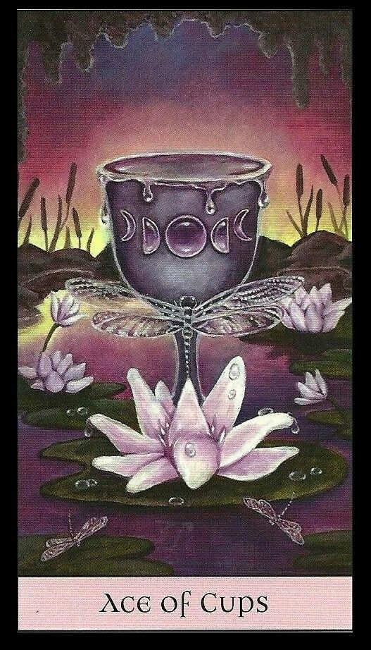 Crystal Visions Tarot Deck Art | Ace of Cups | Oracle Cards | Divination