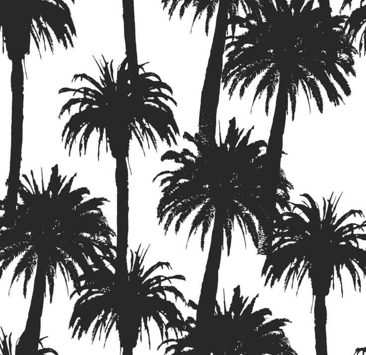 17 Best Ideas About Palm Tree Emoji On Pinterest: 17 Best Ideas About Palm Tree Silhouette On Pinterest