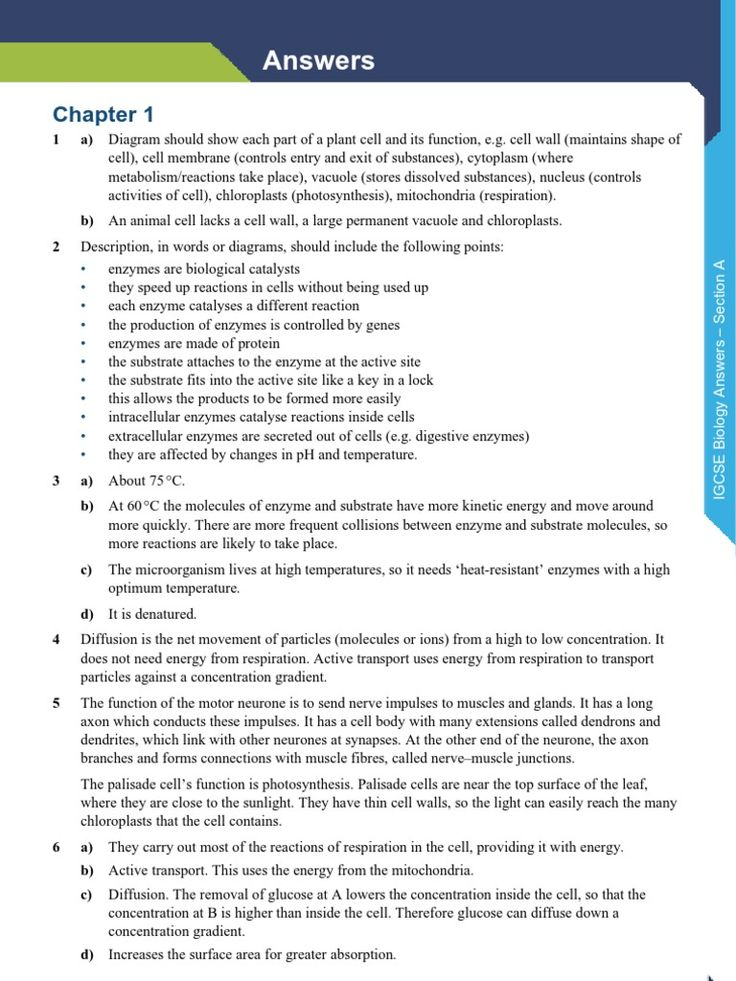 best essay about ideas essay about life things  higher biology respiration essay about myself essay about life submission specialist