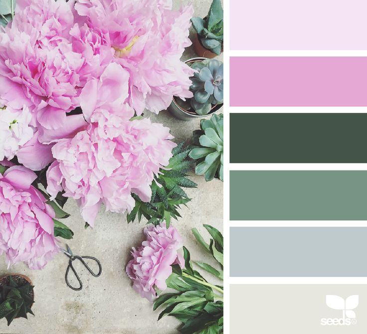 {} Tonalidades flora imagen a través de: @clangart