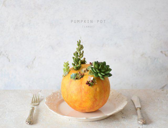 pumpkin pot(large) オレンジ - echidna jin