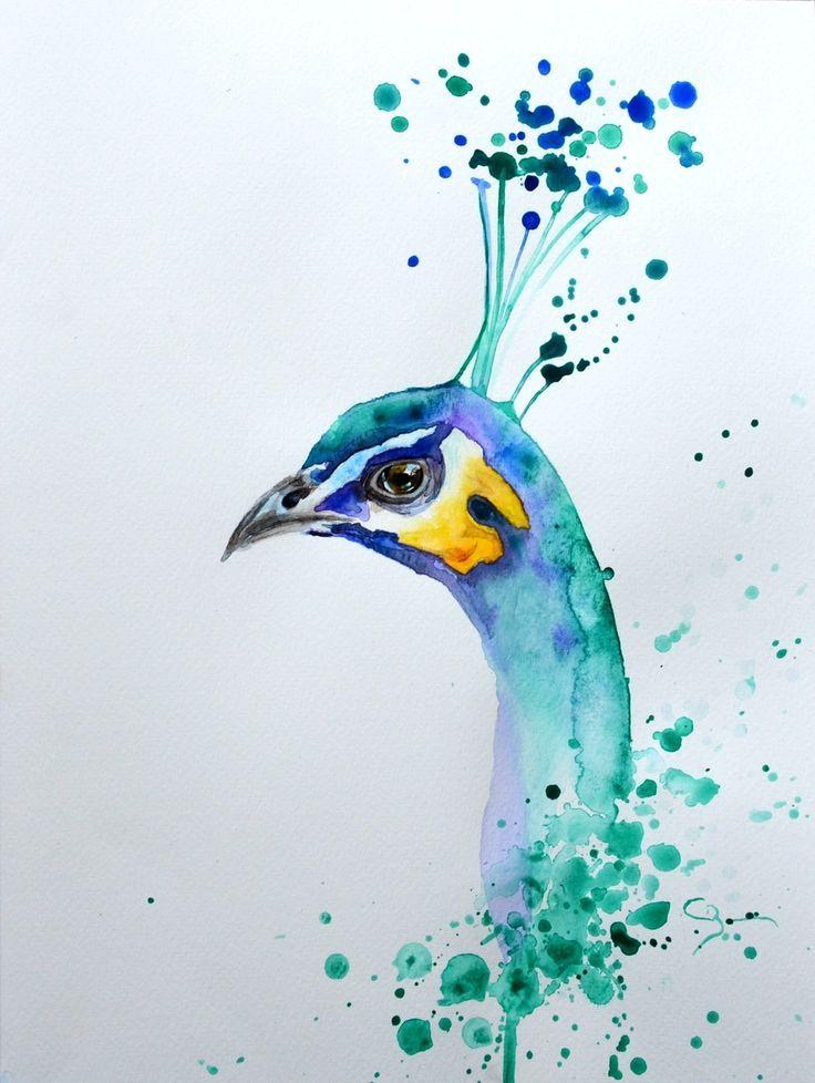 Peinture Animaliere Peintures Animalieres Paon Aquarelle Et
