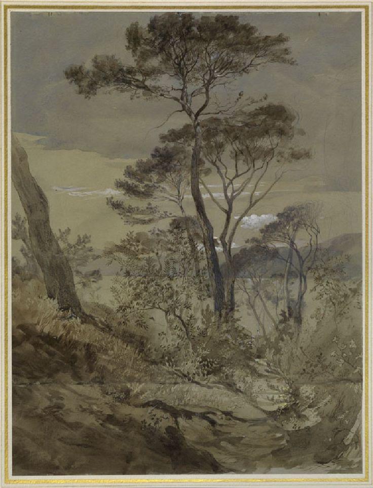 Stone Pines at Sestri, Gulf of Genoa, John Ruskin, 30 April 1845